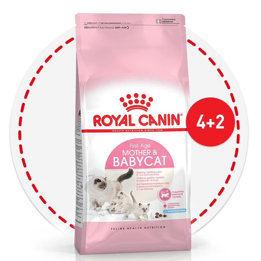 2 кг в подарок при покупке 4 кг корма для котят Royal Canin