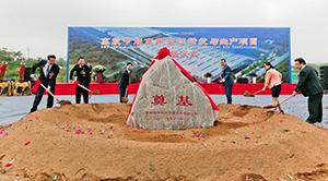Третий заводской корпус заложила в Циндао Hisense с партнерами