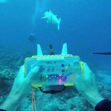 Первая рыба-робот, плавающая в трех измерениях