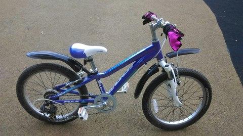 Обзор детского велосипеда FUJI Dynamite 20