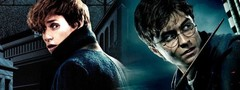 Официальный таймлайн «Гарри Поттера» и «Фантастических тварей»