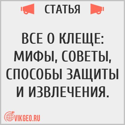 Все о клеще: мифы, советы, способы защиты и извлечения, блог VikGeo