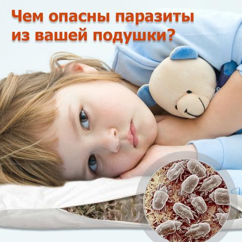 Чем опасны паразиты из вашей подушки?