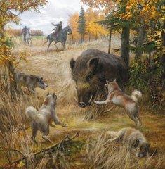 Сроки весенней охоты 2019