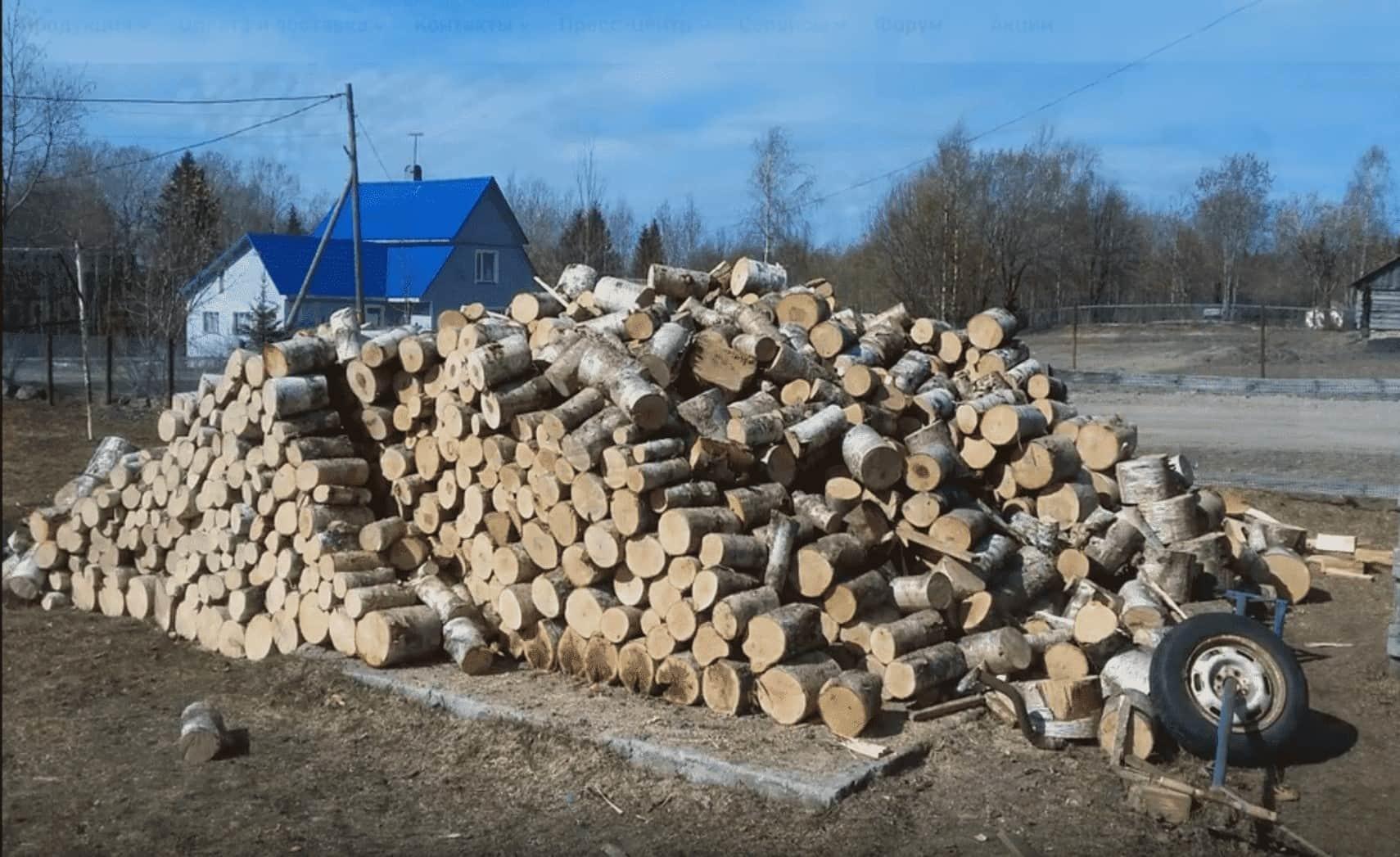 Правильная заготовка дров – чтобы зима оказалась теплой