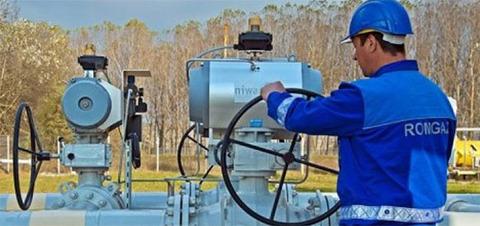 Новое месторождение газа поможет Румынии стать региональным энергетическим хабом