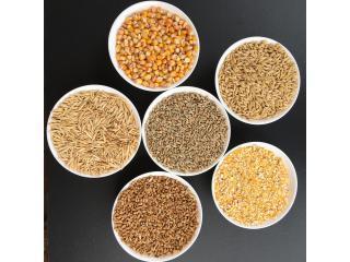 Несоложеное зерно