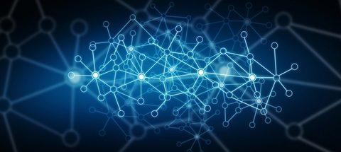 Что такое testnet сеть и mainnet сеть?