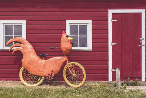 Как ездить на велосипеде с очень маленькими детьми?