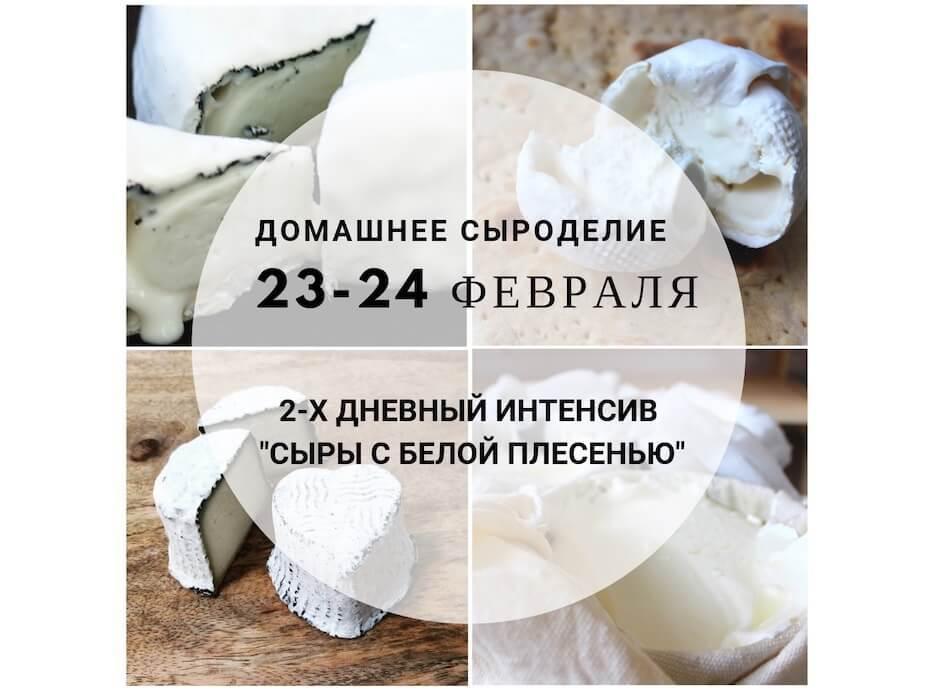 Приглашение на двухдневный интенсив «Сыры с белой плесенью»