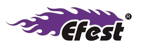 Компания EFEST