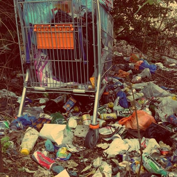 Почему мусорные свалки так губительны для экологии?