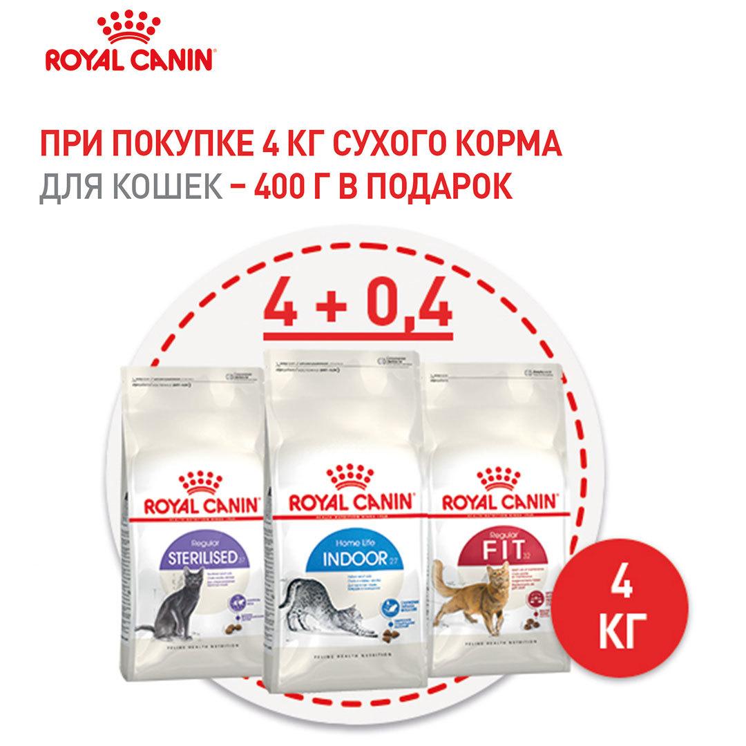 Подарок при покупке Royal Canin для кошек