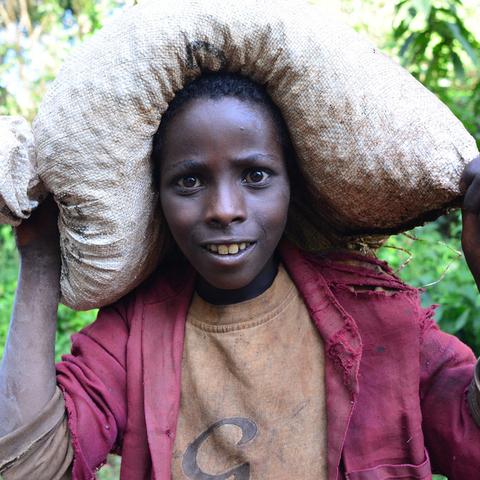 Попробуйте кофе Эфиопии: Сидамо, Иргачиф и Гедео