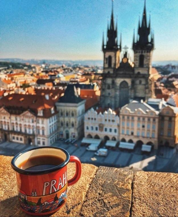 В Шотландии ищут девушку, которая будет жить в замке и пить кофе