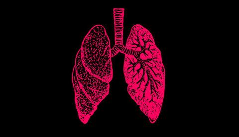 10 фактов о дыхании