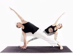 По виду йоги