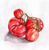 Продукты из томатов