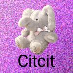 Citcit