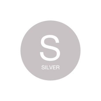 Topchic S - Серебрянные оттенки