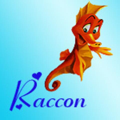 Raccon
