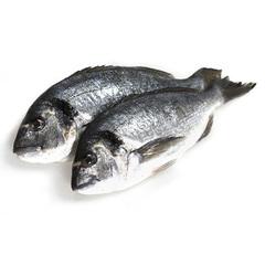 Рыба охлаждённая