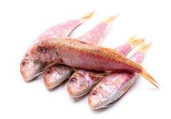 Рыба Крыма