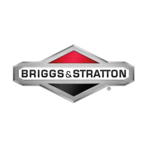 Генераторы BRIGGS & STRATTON с выгодой от профессионалов