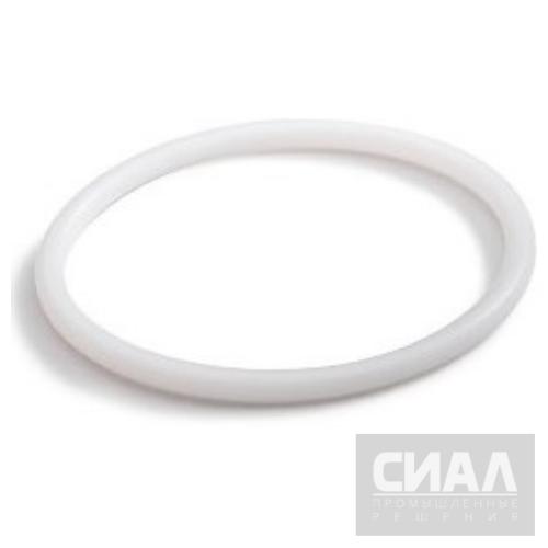 Кольца фторопластовые (тефлоновые, PTFE)