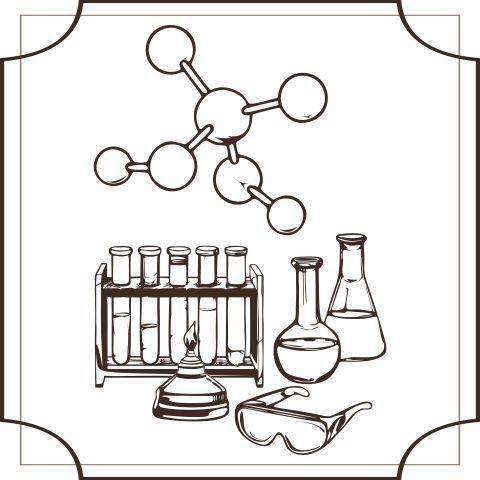 Химику