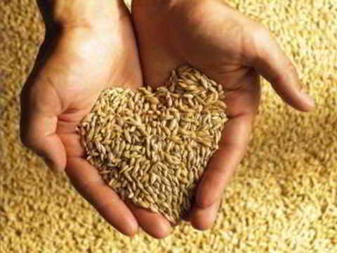 Зерно, сено и комбикорм