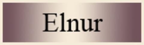 Elnur