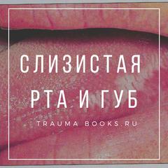Слизистая рта и губ