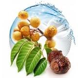 Мыльные орехи - моющее средство