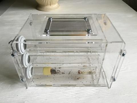 Формикарий Инкубатор Ink3