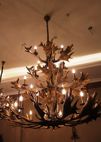 ROLL&HILL Superordinate Antler Chandelier - 4