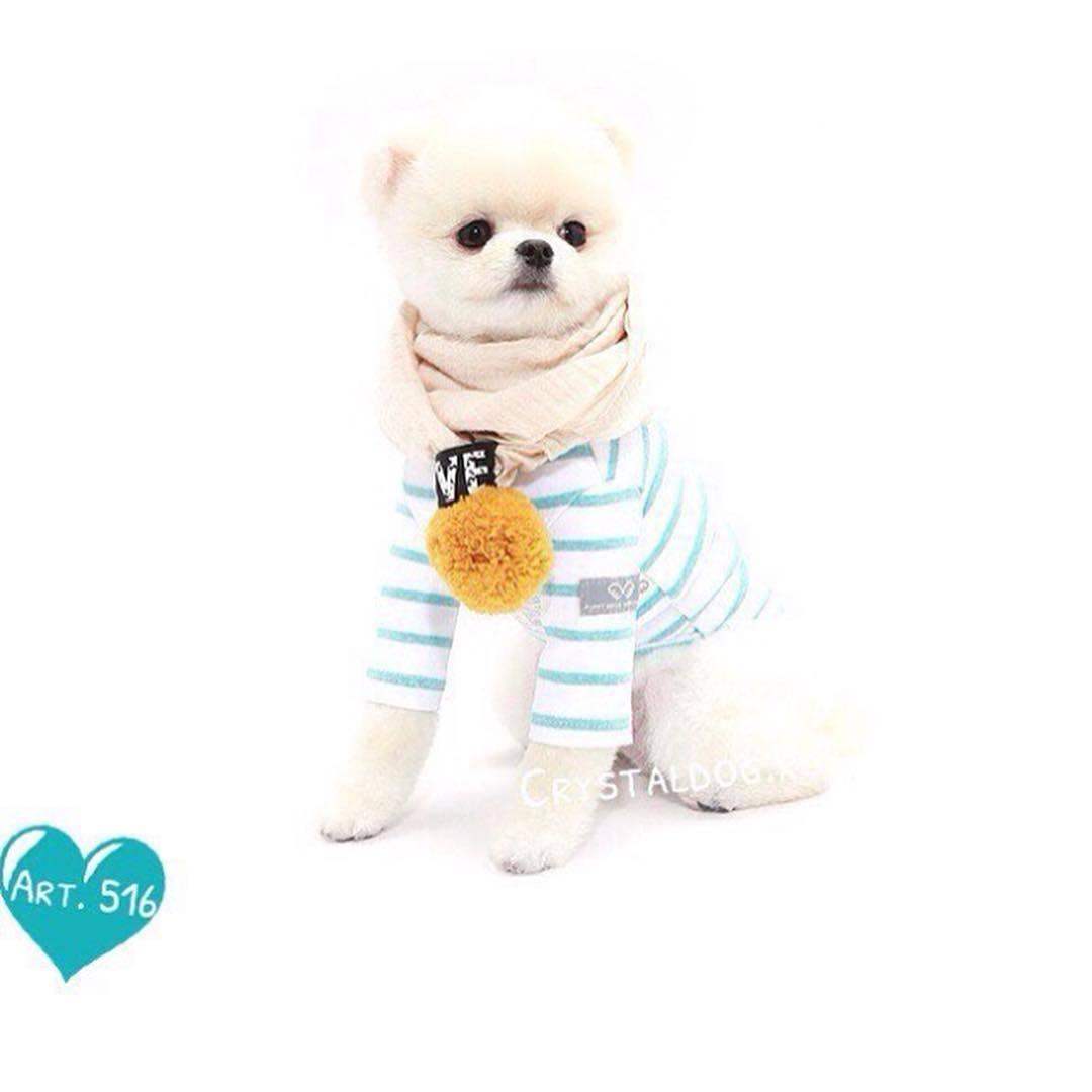 шарфик для собачки