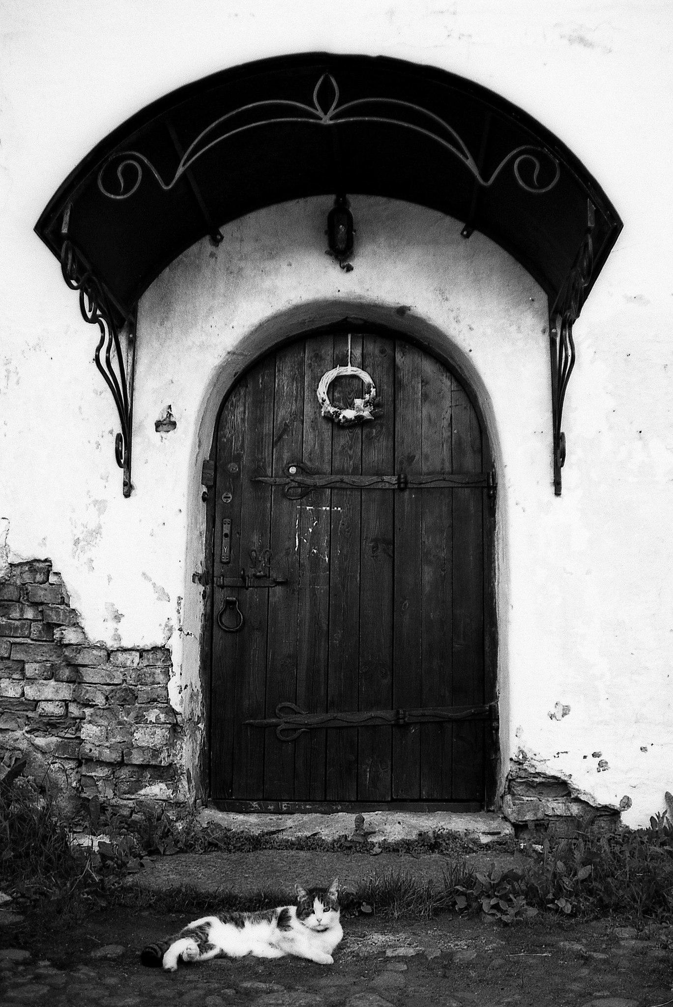 Фотопленка Silberra ULTIMA 100