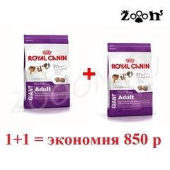 Royal Canin Giant Adult для взрослых собак очень крупных пород,  15кг+15кг. Скидка 850 руб. при регистрации на сайте