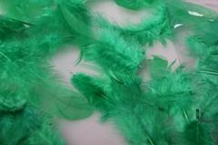 Перья зеленые в пакете 10 гр.