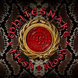 Whitesnake / Flesh & Blood (CD+DVD)