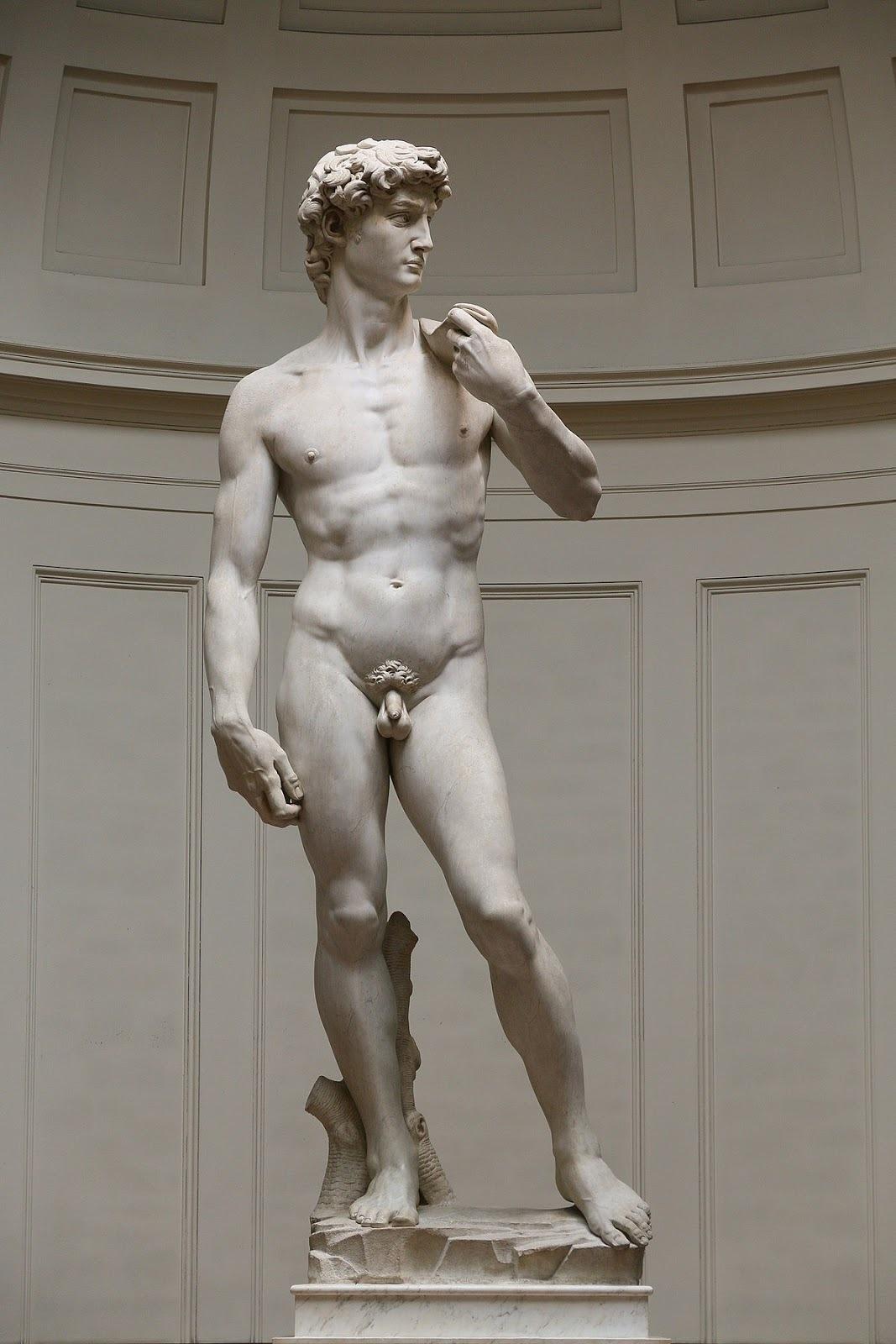 Michelangelo Buonarroti (1475-1564). David. 1501-1504. Marble. Galleria dell'Accademia, Florence, Italy.