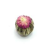 Цветок со сливочным ароматом вид-4