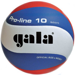 Волейбольный мяч  PRO-LINE