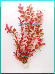 Растение 30см №11