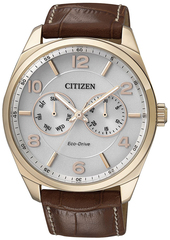 Наручные часы Citizen AO9024-16A