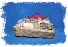 Набор морских раковин в квадратной корзинке
