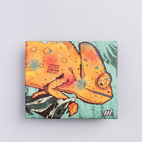 Экологичный бумажник New Chameleon