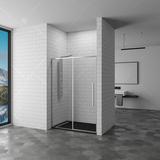 Душевая дверь RGW SV-12 100х195 32321210-11 прозрачное