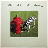 Rush / Signals (LP)